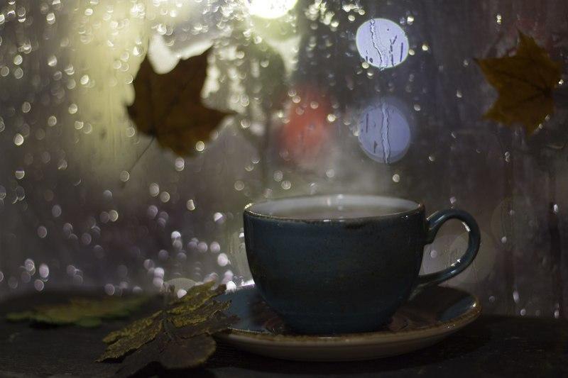 Фотография фотографа Наталья Бочкарева - Дождливый вечер ...