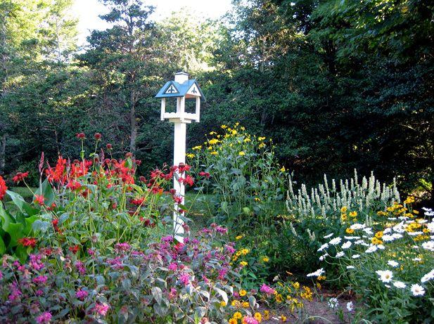 Image Result For Bird And Butterfly Garden Garden 400 x 300
