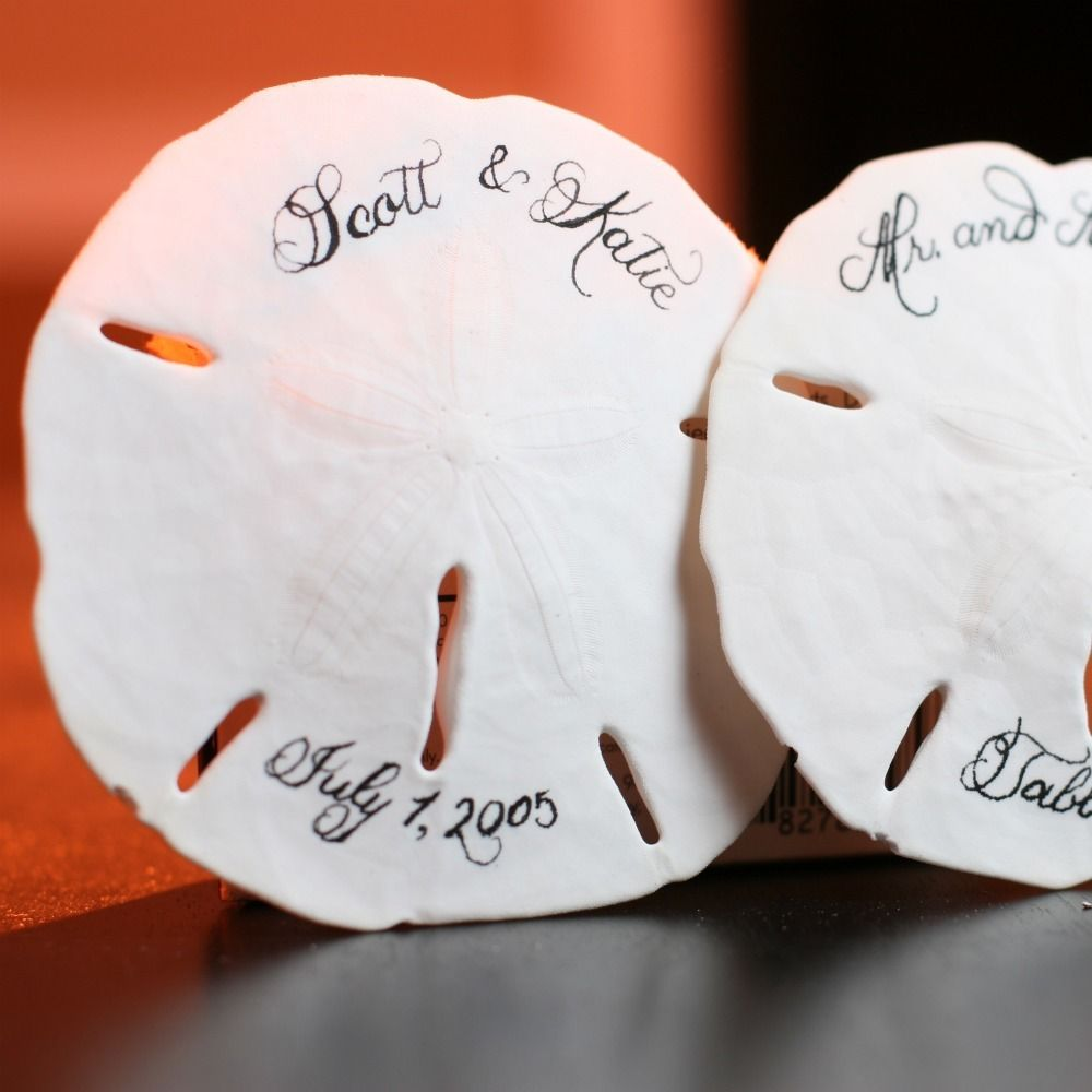Sand Dollar Favors | Wedding sand, Favours and Wedding