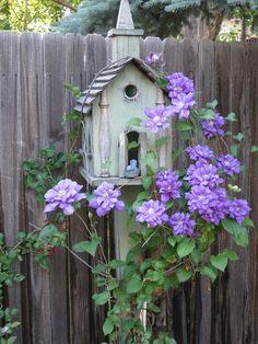 Using a birdhouse as a clematis trellis! So pretty!