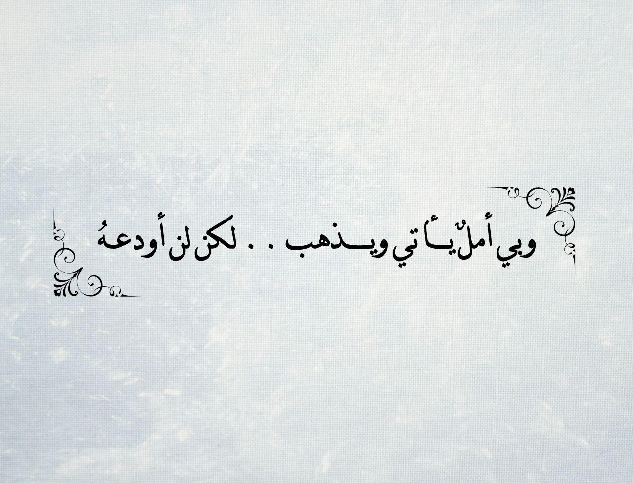 الانثى تحب الاهتمام فلا تبخل بذلك انثى فتاة هي لها بنت اهتمام هو الحب Love Quotes Wallpaper Love Words Funny Arabic Quotes