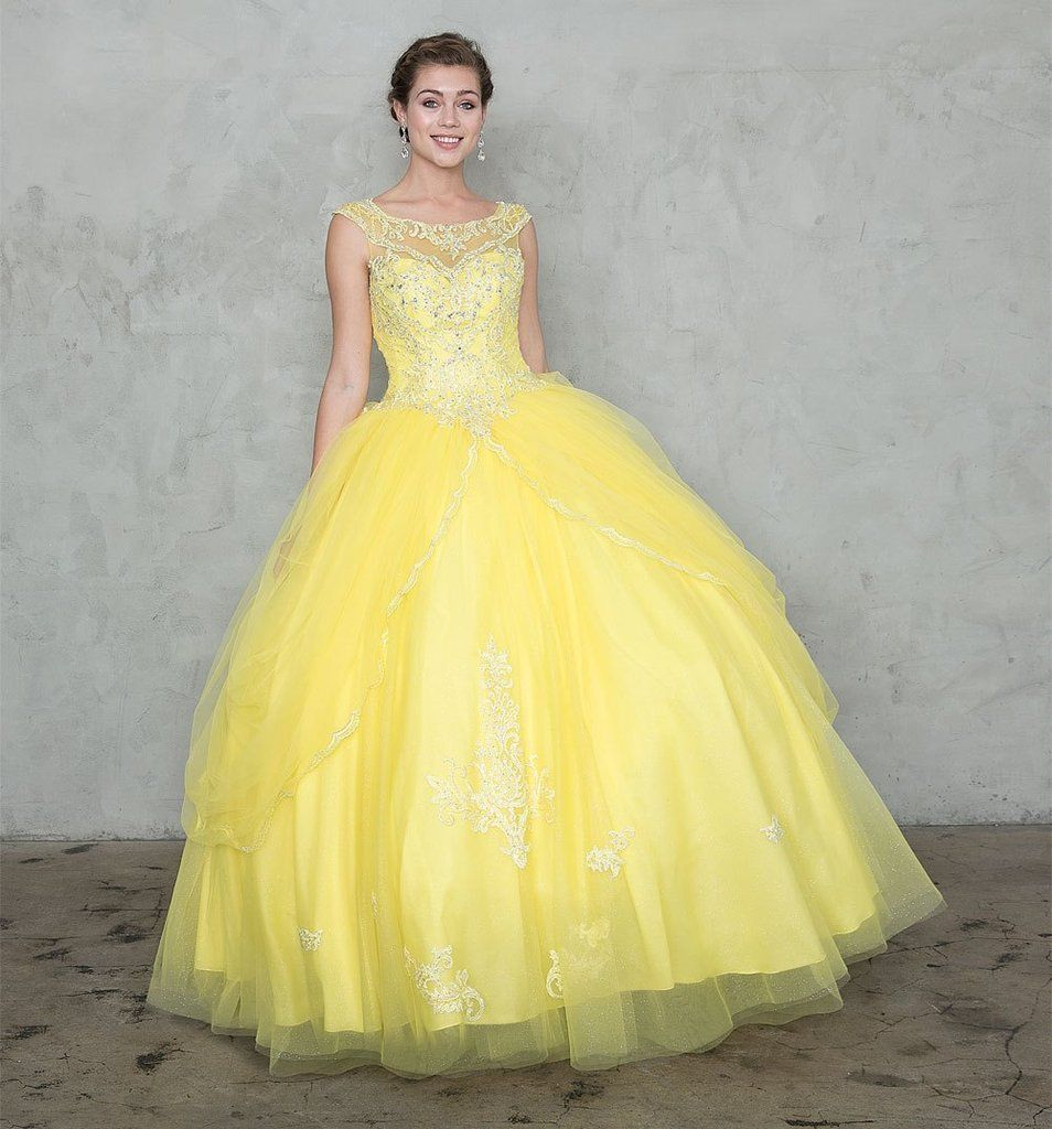 Embroidered sleeveless ball gown with aline skirt in