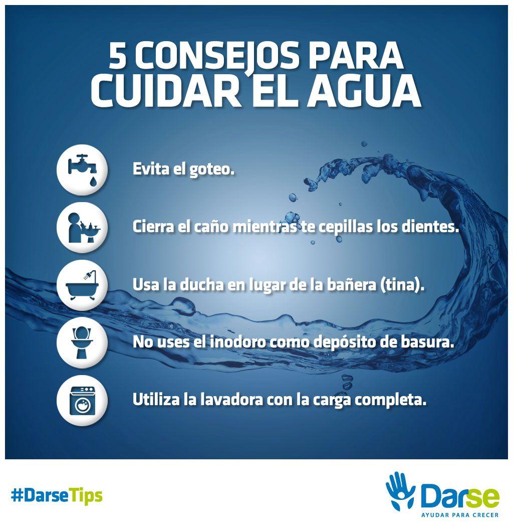 5 consejos de #DARSE para cuidar el agua. Síguenos en www ...