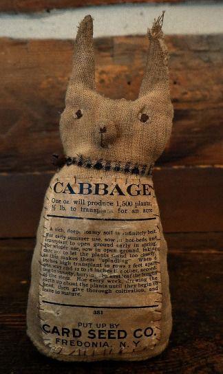 little Cornelius cabbage