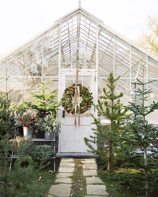 Fresh and green Terrain trees + wreaths.