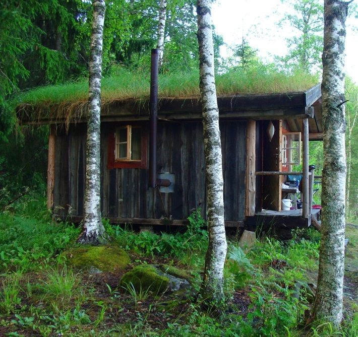 Swedish Cabin With Roof Top Garden And Retractable Outdoor: Wood Cabin With Green Roof In Långserud, Sweden.