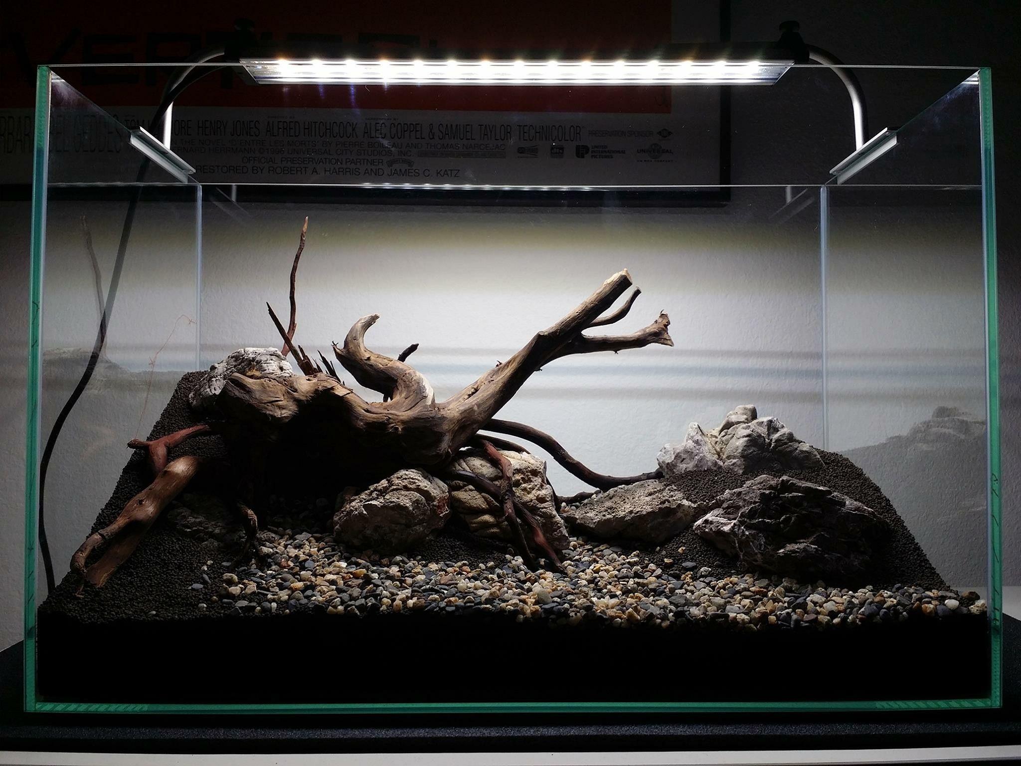 0218d44631ab547d76e5720f47e8189c Incroyable De Aquarium Deco Des Idées