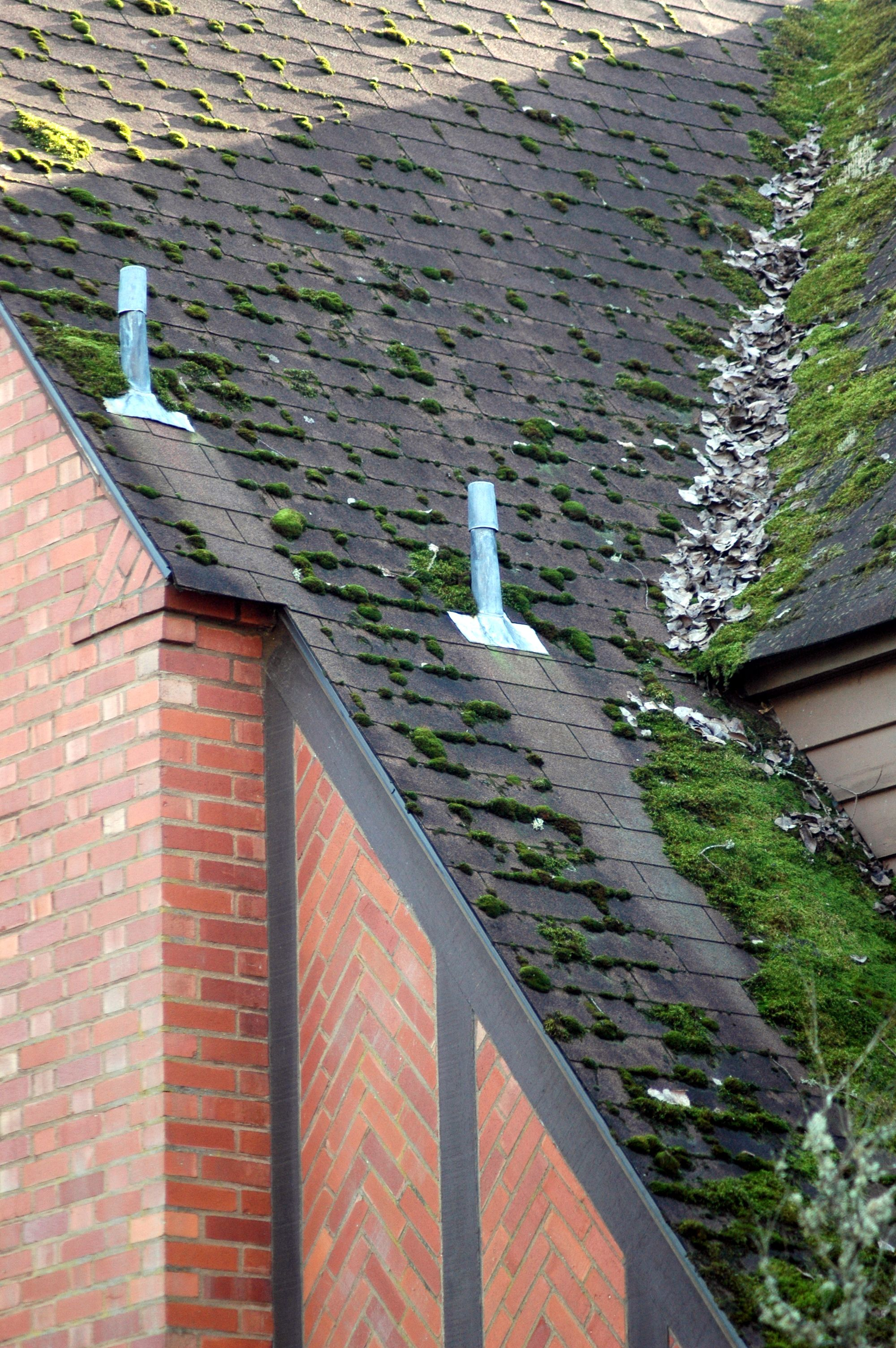Best Moss Removal Gutter Cleaning Vancouver Wa By Northwest Roof Maintenance Water Architecture 400 x 300