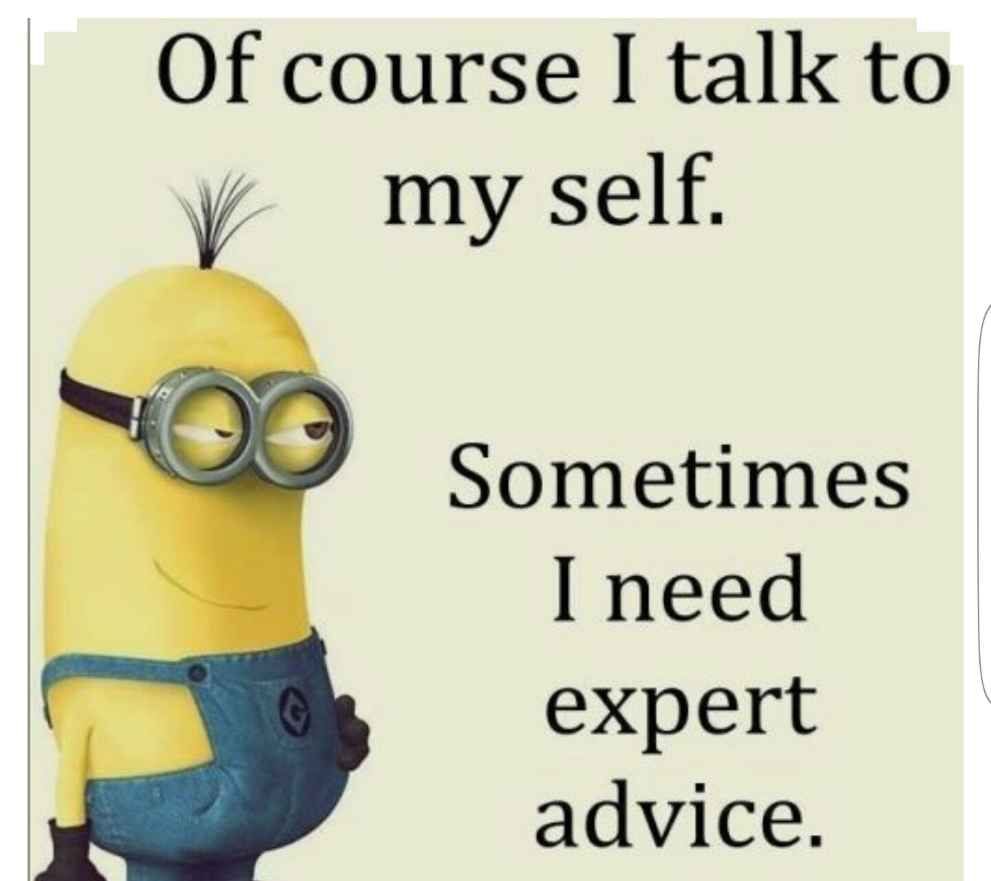 Funniest Minion Quotes Of The Week   Funny Minion Pics U0026 Quotes   Minion  Quotes