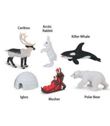 Artico Zorro Artico Oso Polar Osos Polares