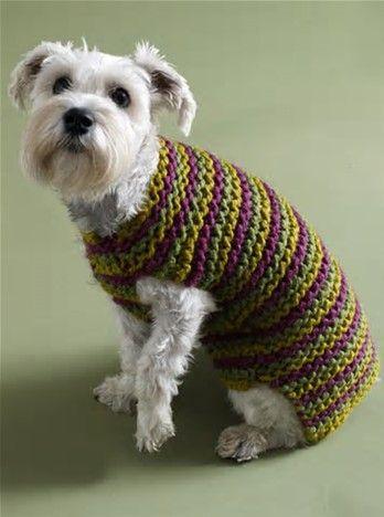 Image Result For Free Easy Crochet Dog Sweater Pattern Crochet