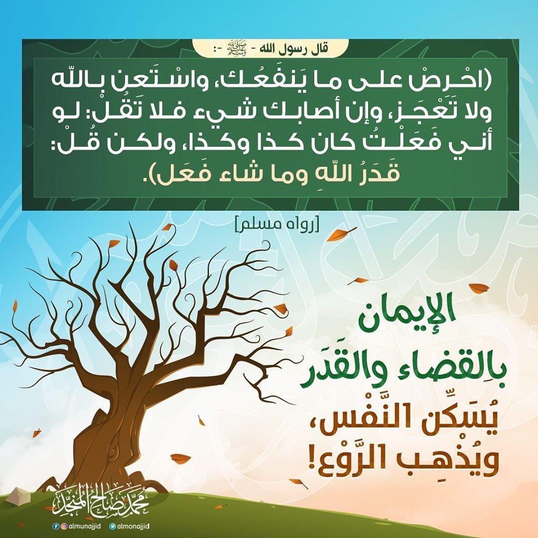Pin By Yamina Kermchet On احاديث نبوية Islam Facts Words Quotes
