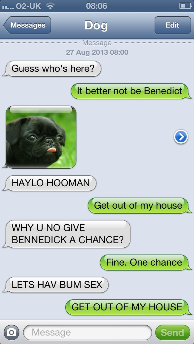 Benedict Dog Texts Pinterest Dog Texts Funny Texts And Humor - Dogs able text 30 hilarious texts dogs