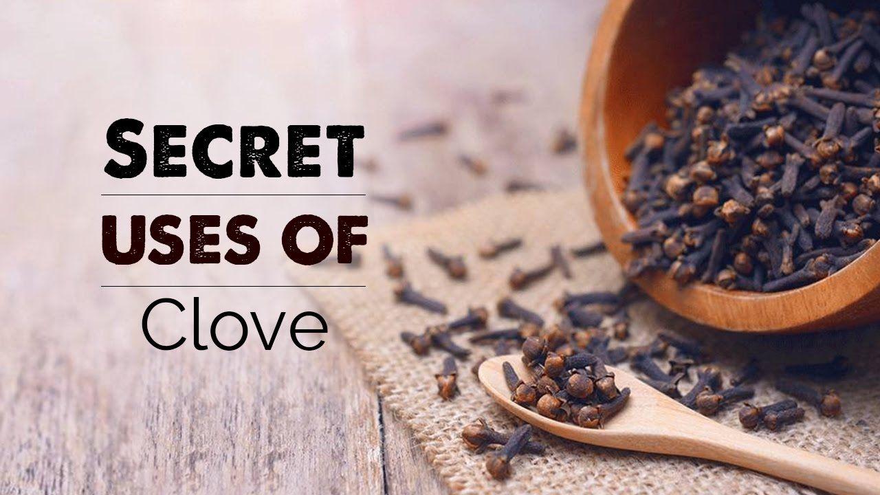 Secret Uses Of Clove Natural Benefits Long Ke Fayde Youtube Girofle Clou De Girofle Menthe