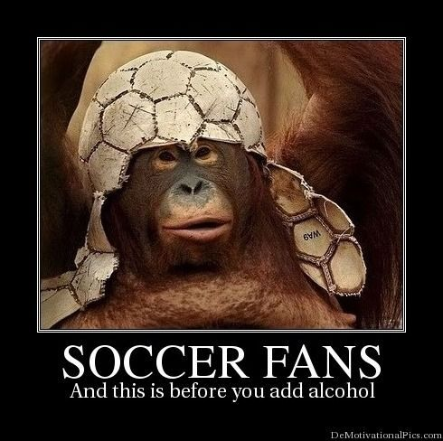Image result for Soccer Fans demotivational poster toptenz.net