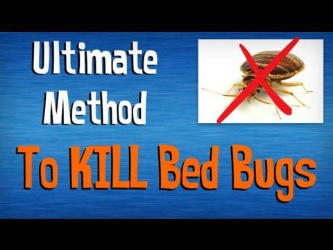 Pin On Bed Bug Killer
