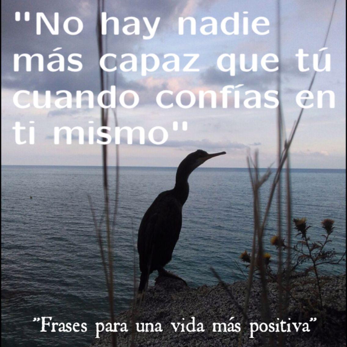 """No hay nadie"" #frases #frasespositivas #capaz #animo #tupuedes #positivo"