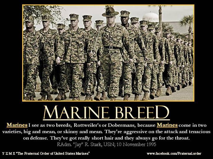 29 Marine Corps Facts You May Not Know