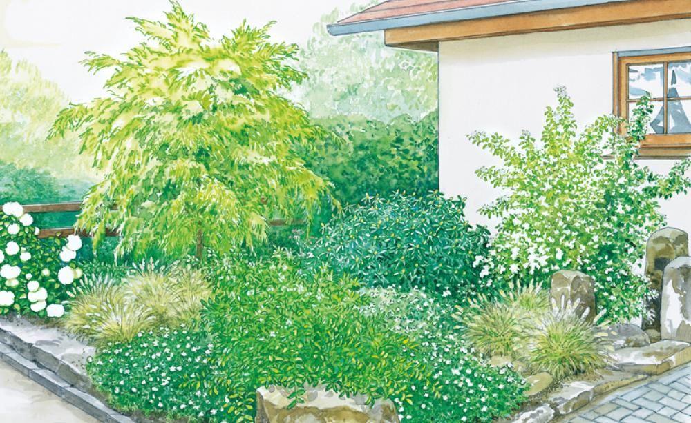 Vorgartengestaltung 40 Ideen zum Nachmachen Backyard and Gardens