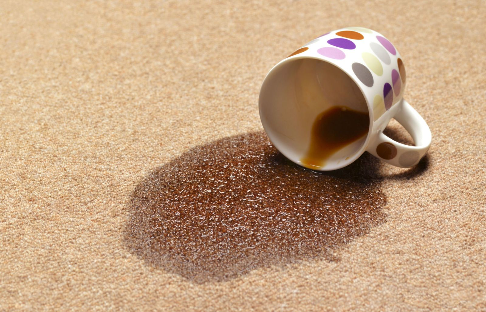 The Best Way To Get Coffee Stains Out Of Everything