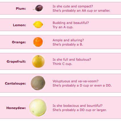 Image Result For Bra Size Fruit Bra Sizes Fruit Helpful Hints