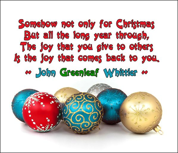 Funny Christmas Quotes Funny Christmas Images And Quotes  Christmas  Pinterest