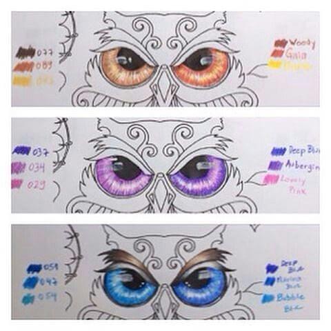 Instagram media livros_fashion - Dicas para pintar os olhos de uma coruja. #oceanoperdidotop#colorindolivrostop#jardimsecretotop#jardimsecretofans#jardimsecreto#oceanodascores#jardimdascores