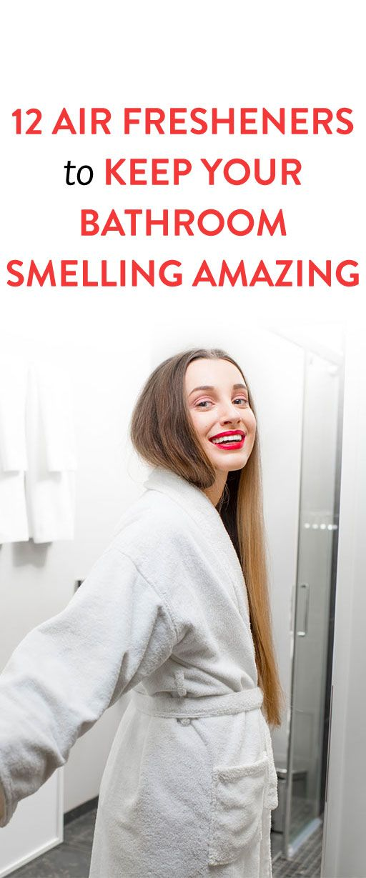 12 Air Fresheners That Stop Bathroom Smells Before They ...