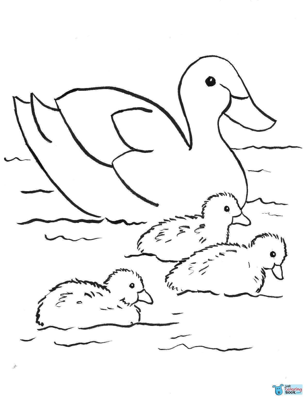 Duck Coloring Games Drpageco Inside Two Mallard Ducks Coloring Pages Family Coloring Pages Bird Coloring Pages Cartoon Coloring Pages