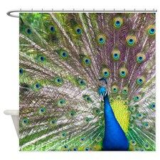 Lyingcat Mug With Images Peacock Shower Curtain Animal Shower