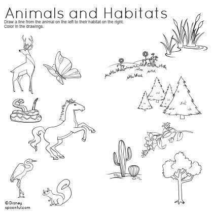 Animals And Habitats Matching Worksheet Printables Spoonful Animal Habitats Worksheets For Kids Animal Worksheets