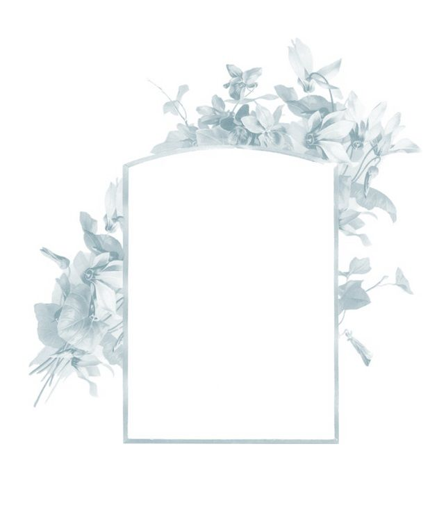 زخرفة إطار العنوان رهيبة فخم ترف اسلامية الإطارات Png وملف Psd للتحميل مجانا Frame Ornament Frame Photo Frame Design