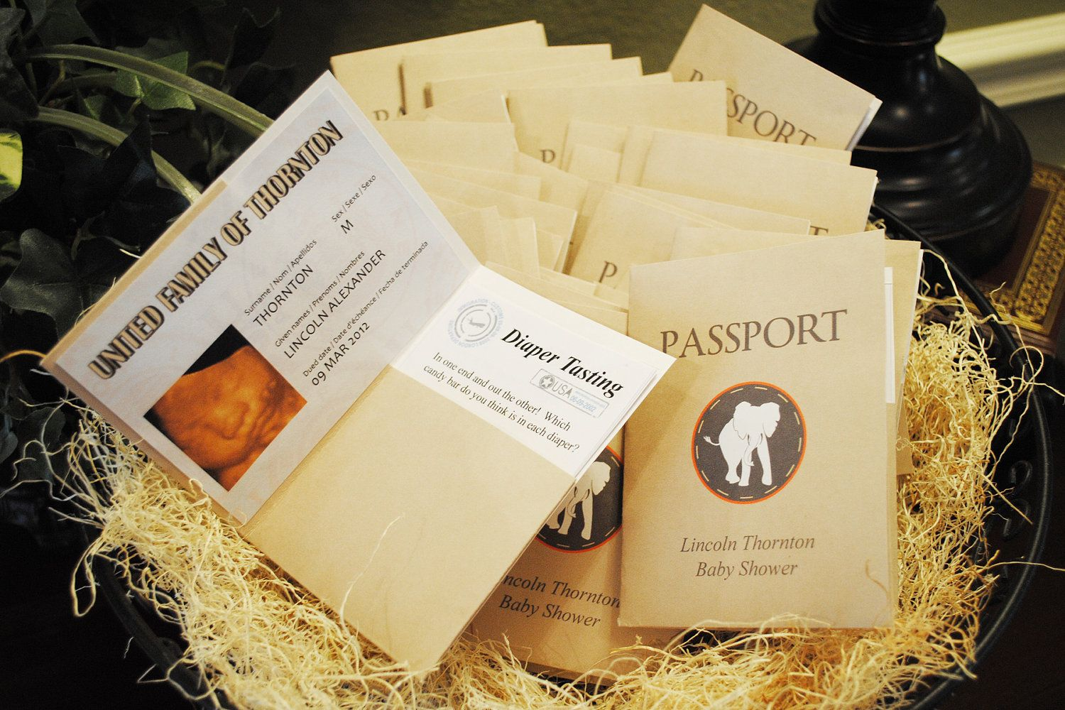 Digital sophisticated safari baby shower folded passport favor digital sophisticated safari baby shower folded passport favor info sheet advice for parents games filmwisefo Image collections