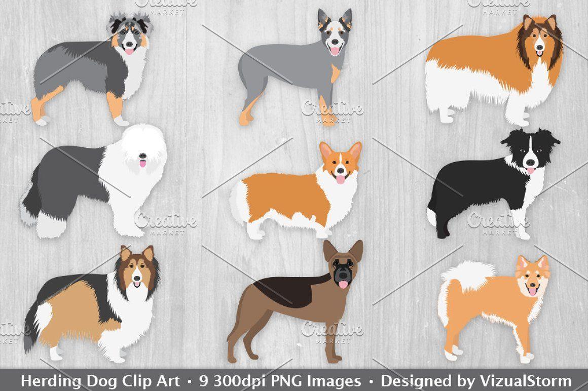 Herding Dog Clip Art Illustrations Dog Clip Art Herding Dogs