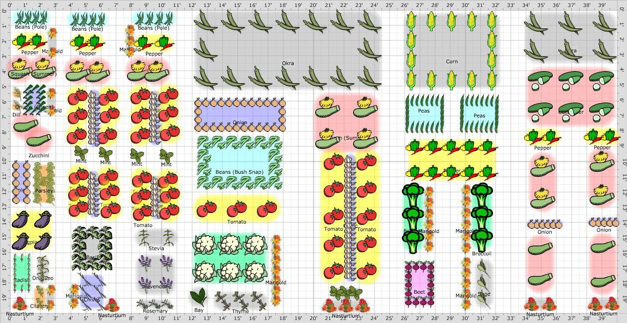 Garden Plan 2012 20 X 40 Plan With Images Vegetable Garden