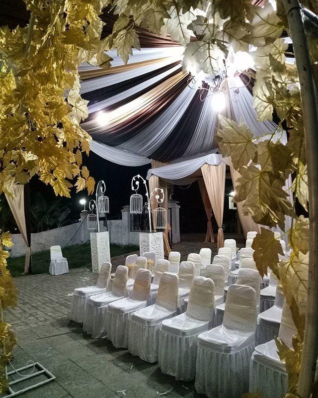 Micefx i will professionally grow market and automate your 085715750256wedding wobogor decor weddingdecoration tendapernikahan bogor weddingorganizerbogor junglespirit Images