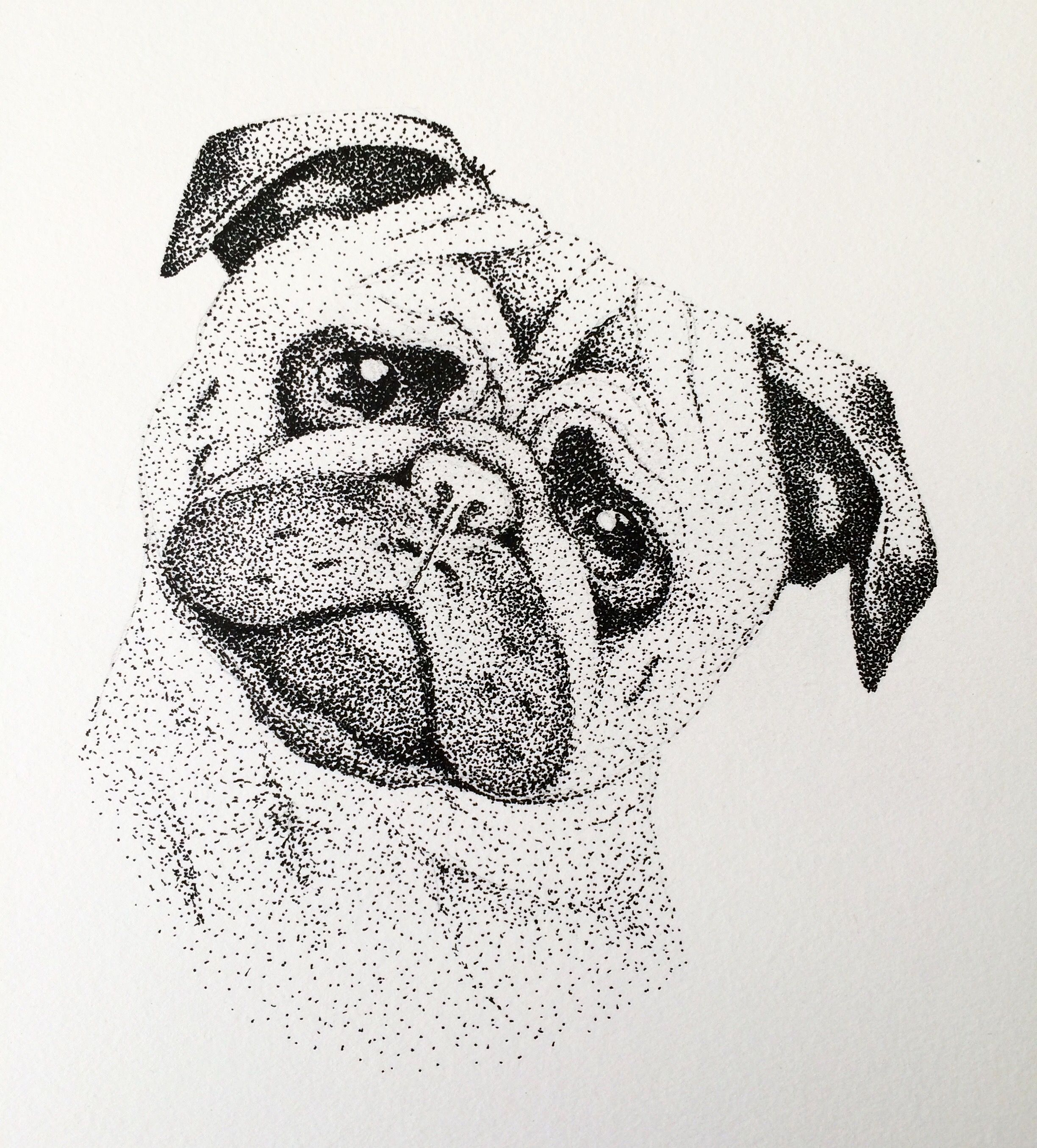 Pug Puntillismo S Pointillism Stippling Art Y Dotted Drawings