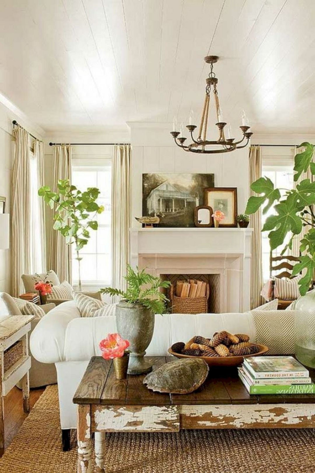 30 Beautiful Living Room Plants Ideas For The Living Room Decoration ...