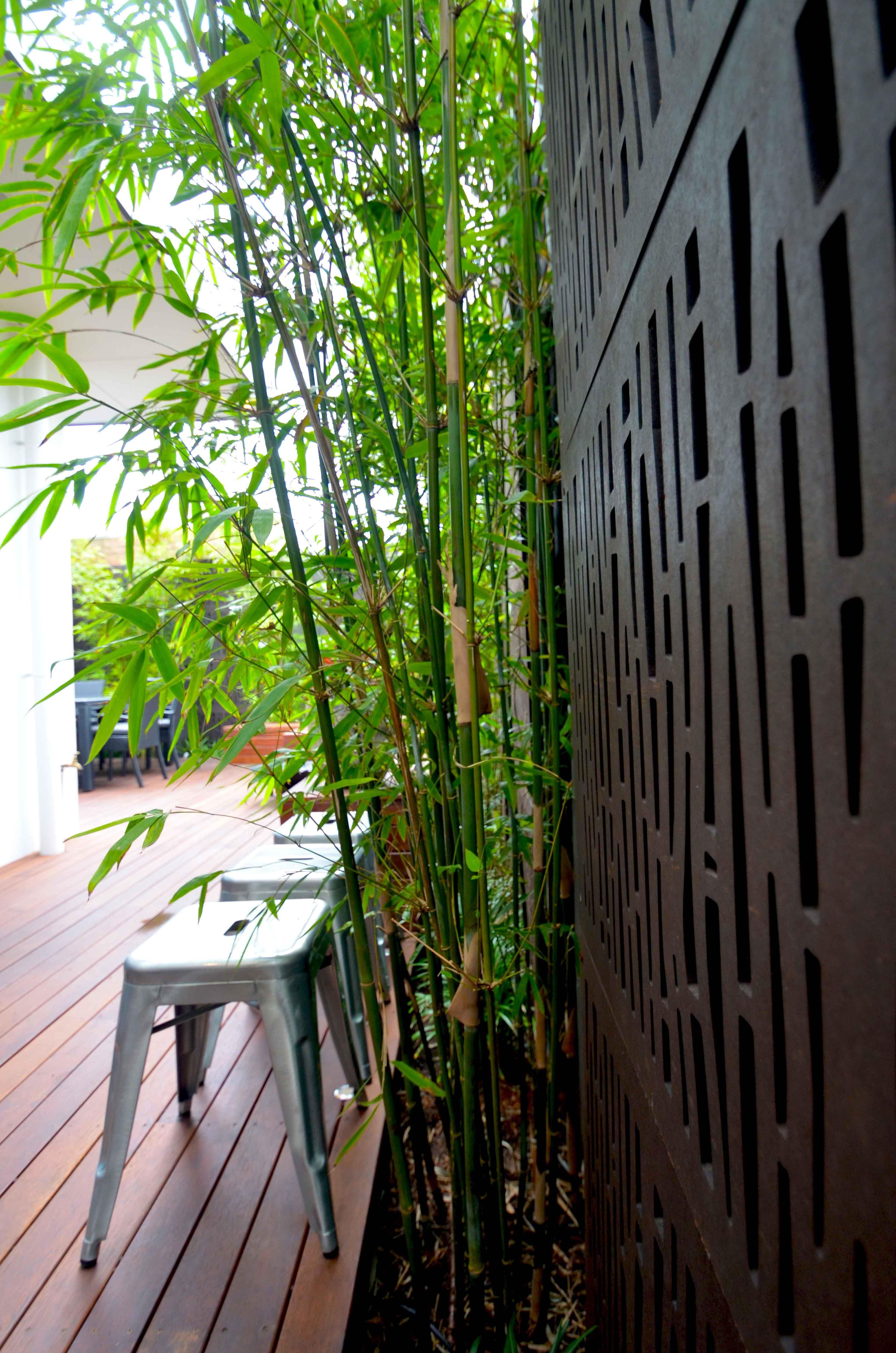 OutDeco Decorative Garden Screens from Chippysoutdoor.com.au ...