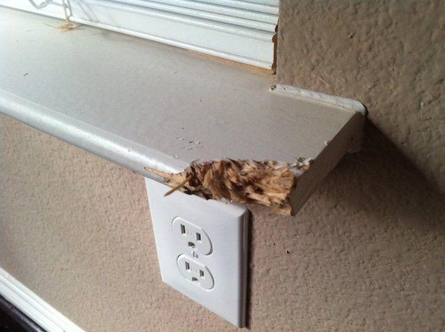 Wood Epoxy Fixes Around The House Diy Home Decor