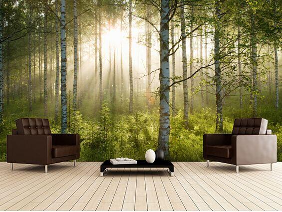 pas cher personnalis paysage naturel fond d 39 cran for t. Black Bedroom Furniture Sets. Home Design Ideas