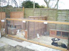 Rabbit Colony Design Google Search Backyard Projects Rabbit Pen Backyard