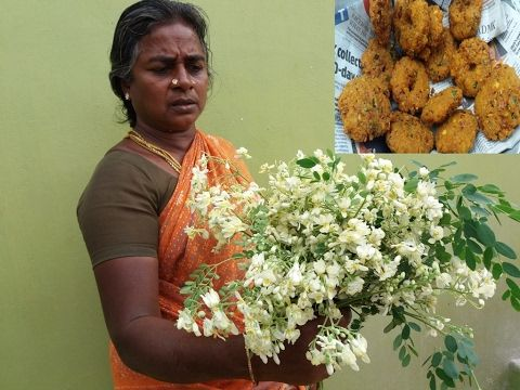 Drumstick Flower Vada Cooking In My Village Healthy Vadai Food Money Food Youtube Drumsticks Cooking Healthy