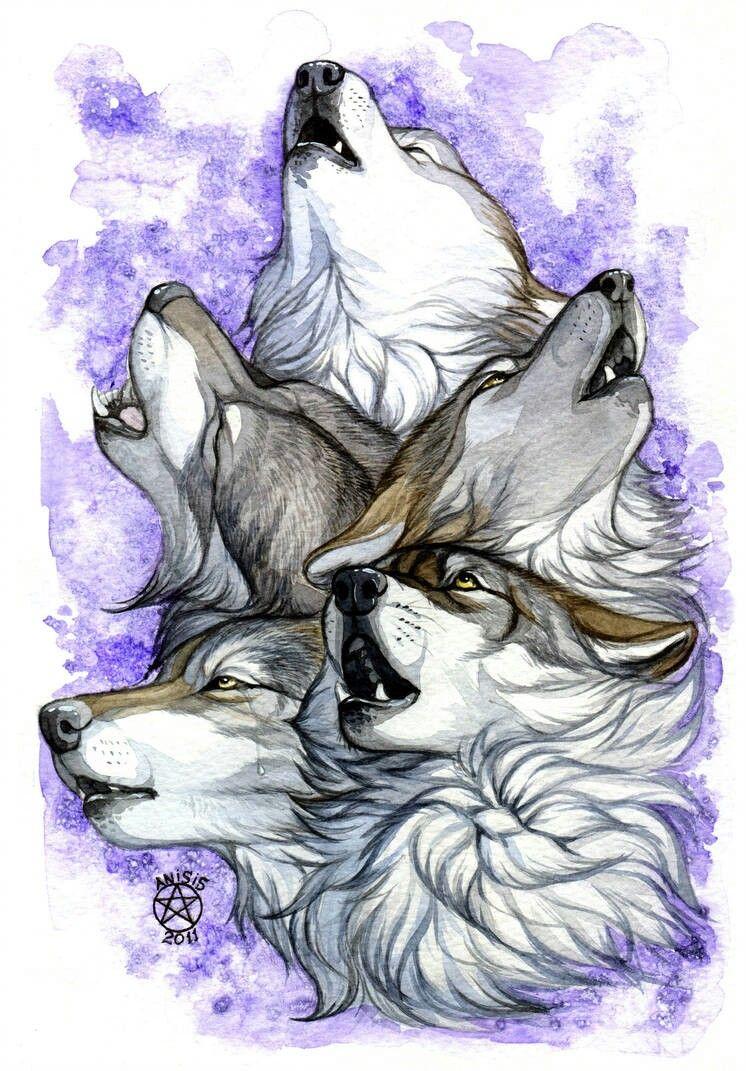 Epingle Par Max Handeson Sur Art Furry Dessin De Loup Loup