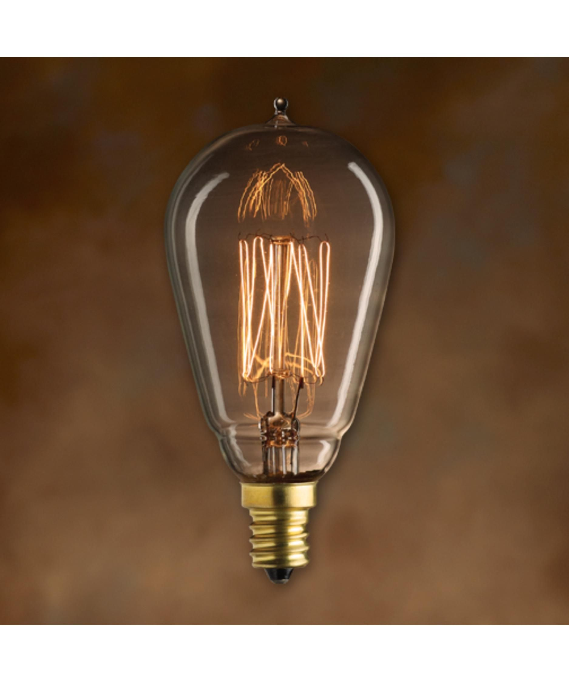 25 Watt 1800k St15 Vintage Light Bulb Capitol Lighting In 2020 Vintage Light Bulbs Edison Style Bulb Bulb