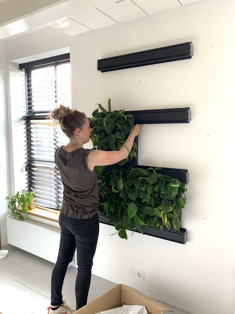 Plantenwand in huis! - Jellina Detmar Interieur &