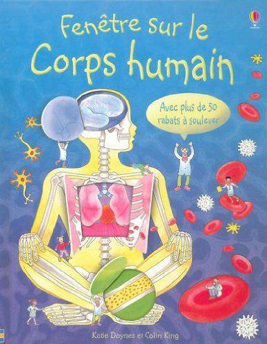 Fenetre Sur Le Corps Humain Amazon Fr Katie Daynes Colin