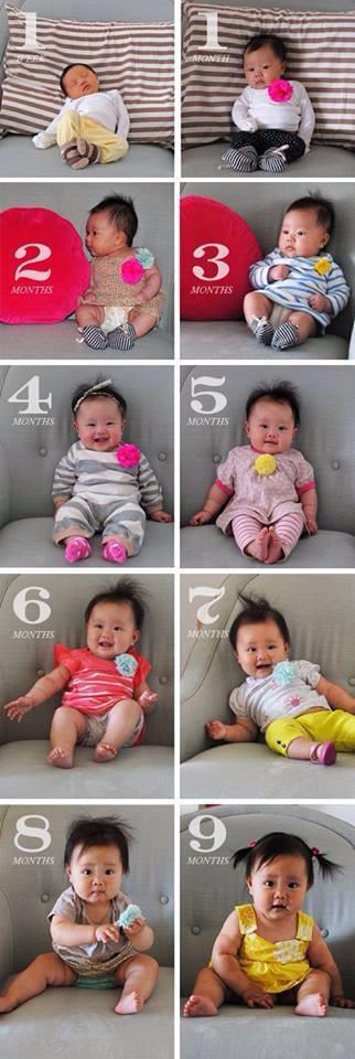 1 - 12 maanden