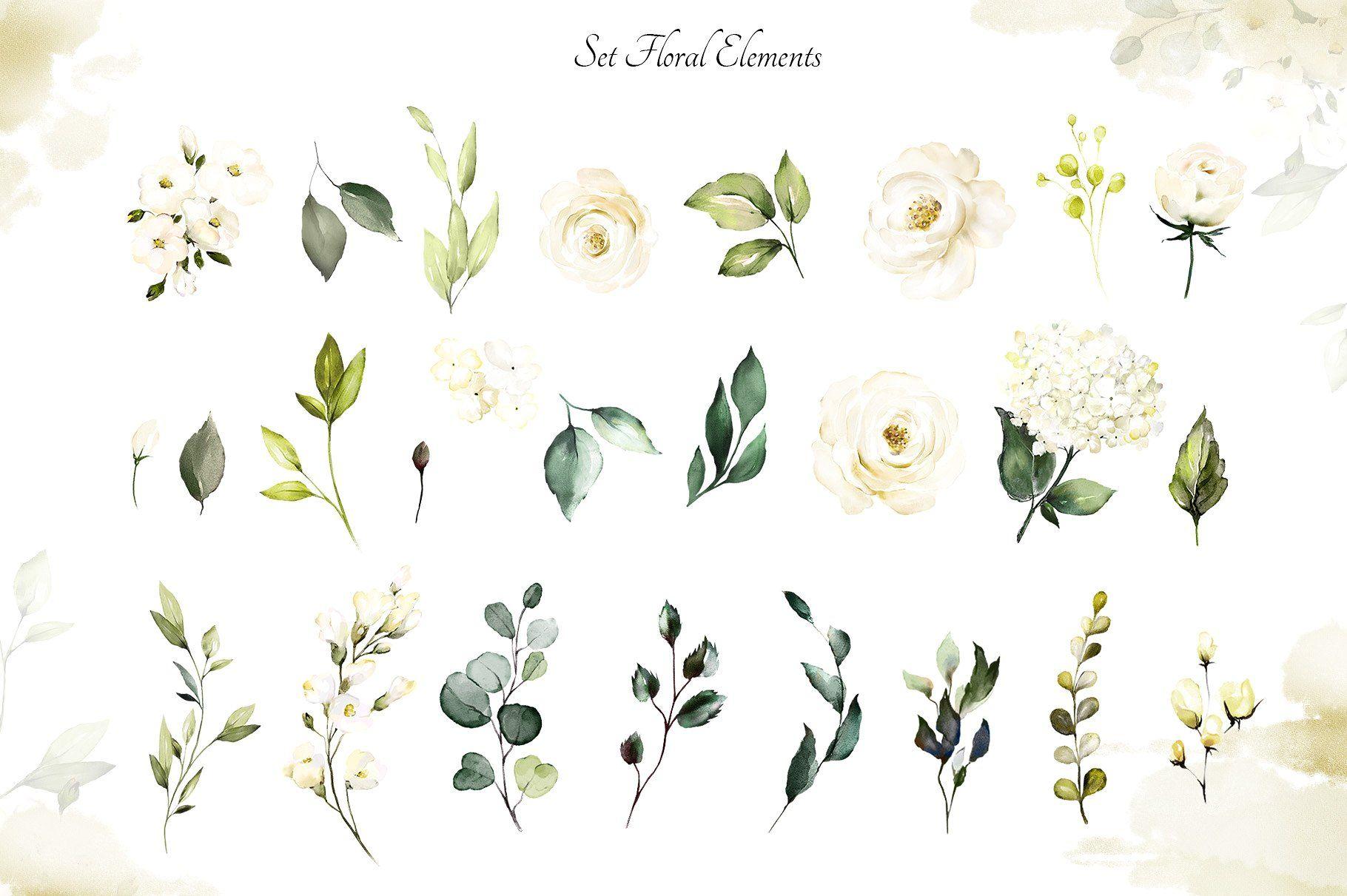 White Roses Watercolor Floral Set Floral Watercolor White Roses Floral Sets