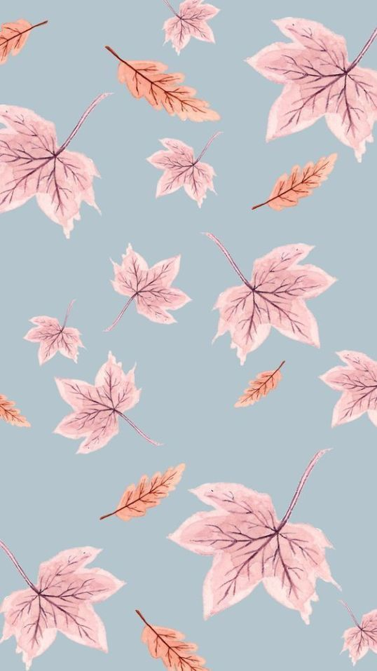 15 Cute iPhone Wallpapers HD Quality - Free Download!